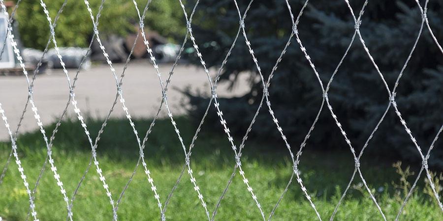 Колючая сетка Пиранья