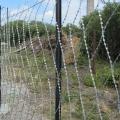 Забор из колючей сетки Пиранья
