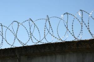 Спиральный барьер Егоза-Аллигатор 600/3 фото