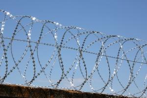 Спиральный барьер Егоза-Аллигатор 700/5 фото