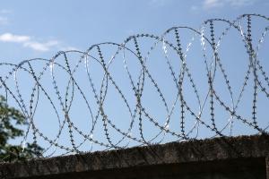 Спиральный барьер Егоза-Аллигатор 800/5 фото