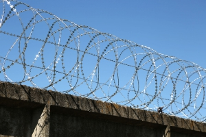 Спиральный барьер Егоза-Аллигатор 800/7 фото