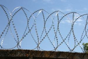 Спиральный барьер Егоза-Аллигатор 900/5 фото