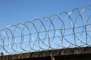 Спиральный барьер Егоза-Аллигатор 900/7 фото