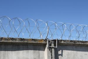 Спиральный барьер Егоза-Кайман 450/5 фото