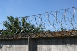 Спиральный барьер Егоза-Кайман 500/5 фото