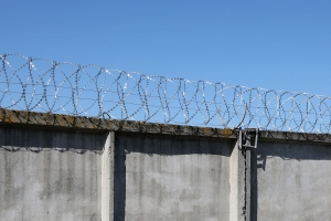 Спиральный барьер Егоза-Стандарт 400/5 фото