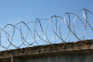 Спиральный барьер Егоза-Стандарт 450/3 фото