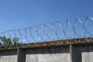 Спиральный барьер Егоза-Стандарт 450/5 фото