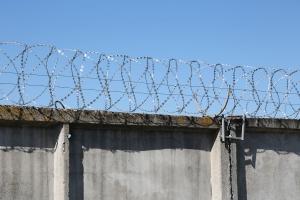 Спиральный барьер Егоза-Стандарт 500/5 фото