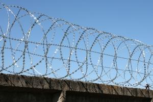 Спиральный барьер Егоза-Стандарт 800/5 фото