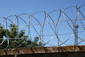 Спиральный барьер Егоза-Стандарт 800/7 фото