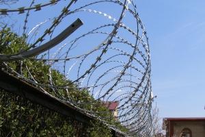 Спиральный барьер Егоза-Стандарт 950/7 фото
