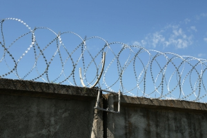 Спиральный барьер Егоза-Супер 600/5 фото
