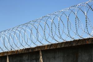 Спиральный барьер Егоза-Супер 800/5 фото