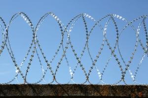 Спиральный барьер Егоза-Супер 950/5 фото