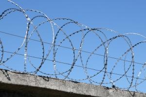 Спиральный барьер Гюрза 400/3 фото
