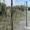 Забор усиленный из сетки Пиранья