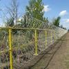 Забор из спиральной Егозы